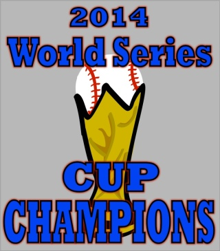 world series cup trophy FINAL